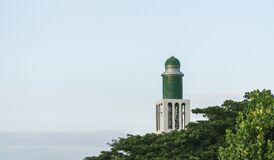 Lighthouse tower among green leaves on the beach