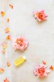 Aceite color de rosa del masaje del Aromatherapy Imagen de archivo libre de regalías