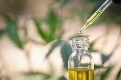Aceite de cáñamo, productos médicos de la marijuana incluyendo la hoja del cáñamo, cbd y aceite del hachís, medicina alternativa fotografía de archivo libre de regalías