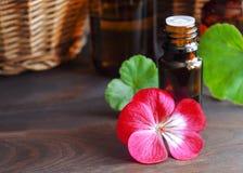 Aceite de geranio esencial Imágenes de archivo libres de regalías
