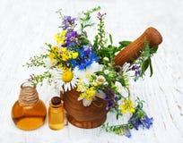 Aceite de la naturaleza con los wildflowers Imagenes de archivo