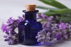 Aceite de lavanda aromático en la botella y el primer azules de las flores Fotos de archivo libres de regalías