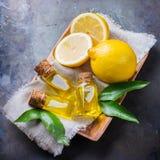 Aceite de limón esencial orgánico con las hojas y la fruta del verde Foto de archivo libre de regalías