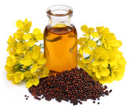 Aceite de mostaza con la flor Fotos de archivo