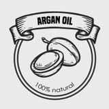 Aceite de nuez del dibujo del vector del Argan, fruta, baya, hoja, rama, planta Imagen de archivo