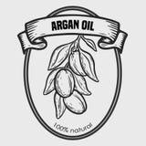 Aceite de nuez del dibujo del vector del Argan, fruta, baya, hoja, rama, planta Fotografía de archivo libre de regalías