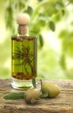 Aceite de oliva Foto de archivo libre de regalías