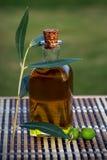 Aceite de oliva Fotografia de Stock