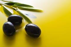 Aceite de oliva Fotografía de archivo libre de regalías