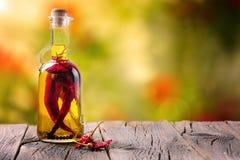 Aceite de oliva con la especia y las hierbas Imagenes de archivo