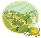 Aceite de oliva con paisaje rural ilustración del vector