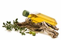 Aceite de oliva de la decoración Foto de archivo libre de regalías