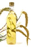 Aceite de oliva de la Virgen Fotos de archivo