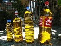 Aceite de oliva en botellas plásticas Foto de archivo libre de regalías