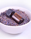 Aceite del aromatherapy de la lavanda Fotos de archivo