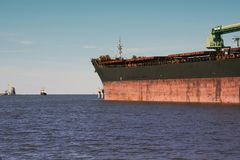 Aceite del cargo del puerto marítimo y terminal del amoníaco Fotografía de archivo