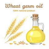 Aceite del germen de trigo en la botella de cristal Ilustraci?n del vector stock de ilustración