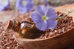 Aceite del lino en una botella de cristal, flores y semillas en una macro de la cuchara Foto de archivo