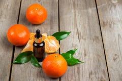 Aceite esencial de la mandarina orgánica Imagenes de archivo