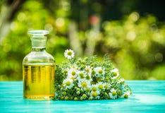 Aceite esencial de la manzanilla y un manojo de flores frescas de la manzanilla Copie el espacio Medicina natural Foto de archivo