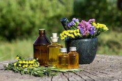 Aceite esencial de Rosemary en un mortero con el manojo de hierbas Fotografía de archivo libre de regalías