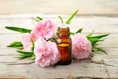 Aceite esencial del absoluto del clavel y flores rosadas en la tabla de madera foto de archivo