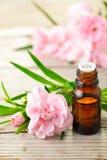 Aceite esencial del absoluto del clavel y flores rosadas en la tabla de madera fotos de archivo libres de regalías