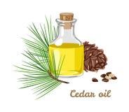 Aceite esencial del cedro en una botella de cristal ilustración del vector