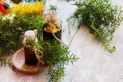 Aceite esencial del enebro en una botella de cristal en una tabla de madera fotografía de archivo libre de regalías