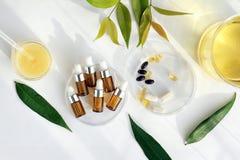 Aceite esencial natural, envases cosméticos de la botella con las hojas herbarias verdes, etiqueta en blanco para la maqueta de m imagen de archivo