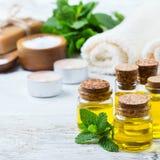 Aceite esencial orgánico con las hojas de menta verdes, concepto del balneario Imagen de archivo libre de regalías