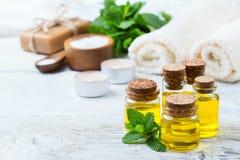 Aceite esencial orgánico con las hojas de menta verdes, concepto del balneario Fotos de archivo