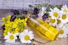 Aceite herbario mezclado Aceite esencial diverso Flores coloridas imagenes de archivo