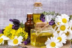Aceite herbario mezclado Aceite esencial diverso Flores coloridas imagen de archivo libre de regalías