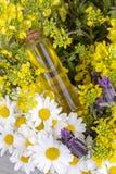 Aceite herbario mezclado Aceite esencial diverso Flores coloridas foto de archivo