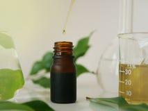 Aceite natural u orgánico Imagen de archivo libre de regalías