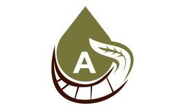 Aceite Olive Nature Leaf Initial A Imágenes de archivo libres de regalías