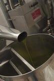 Aceite y aceitunas Cilento Campania Aquara (él) Oliv virginal adicional Fotografía de archivo libre de regalías