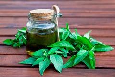 Aceite y albahaca de oliva Imagen de archivo