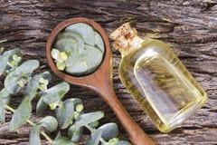 Aceite y hoja del eucalipto fotos de archivo