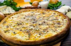 Aceite y queso del valle del queso de la pizza Imágenes de archivo libres de regalías