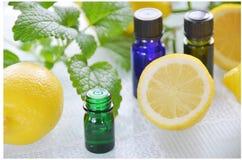 Aromatherapy natural con las hierbas y el limón Foto de archivo