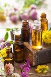 Aceites esenciales e hierbas médicas de las flores Imágenes de archivo libres de regalías