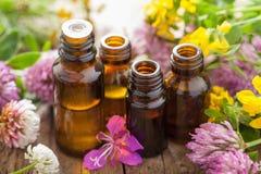 Aceites esenciales e hierbas médicas de las flores Fotos de archivo