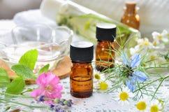 Aceites esenciales y cosméticos herbarios Imágenes de archivo libres de regalías