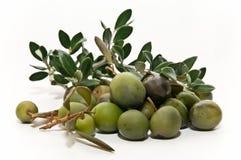Aceitunas con las ramas de olivo Imagen de archivo