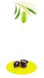 Aceitunas, hojas del verde y Olive Oil Drop Isolated Imagenes de archivo