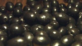 Aceitunas negras 2 tiros almacen de video