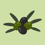 Aceitunas verdes y negras Fotografía de archivo