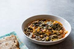 Acelga saudável caseiro com arroz, cebolas e pasta de tomate no potenciômetro do metal/alimento turco Pazi fotos de stock royalty free